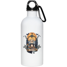 23663 20 oz. Stainless Steel Water Bottle
